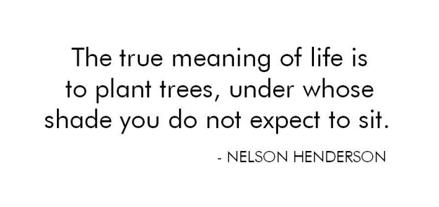 Quote - The true meaning of life is to plant trees, under show shade you do not expect to sit.